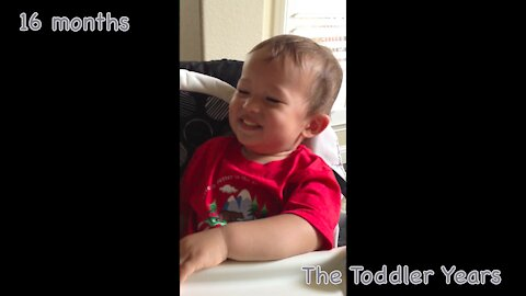 16-month-old loves The Grouchy Ladybug Story