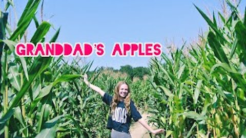 Granddad's Apples in North Carolina with my family!!! Corn maze plus apple cannon!!!