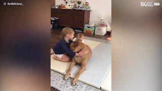 L'amore di un cane per i suoi fratellini umani