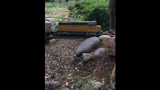 Model train compilation