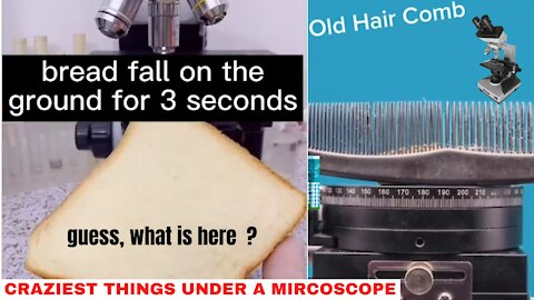 💥👩👩👦CRAZIEST THINGS UNDER A MIRCOSCOPE🎊🏄♀️🏇