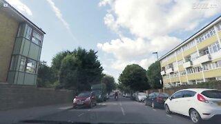 Forbipasserende helt slår ned raner i London