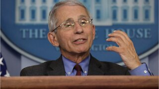 Fauci 'Not Comfortable' With U.S. COVID cases