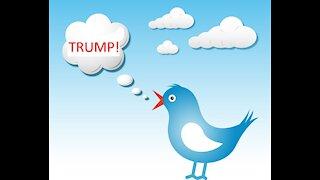 Trump Twitter?