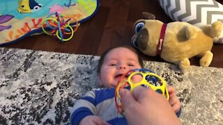 Baby can't stop laughing in amazement at new toy ball