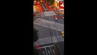 Crossing *
