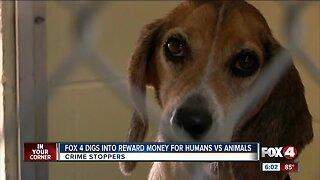 Digging into reward money for humans versus animals