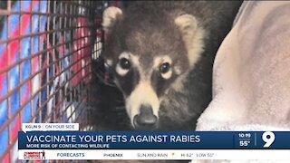 Pima Animal Care Center urges rabies vaccinations