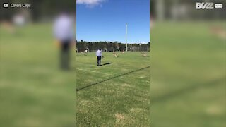 Canguri invadano il campo durante una partita di calcio infantile