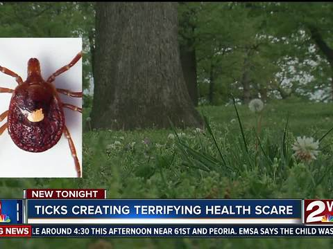 The Bite of a Lone Star Tick Can Make You Allergic to Red Meat