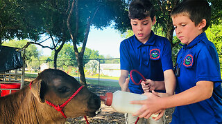 Okeechobee County offers agriculture program to elementary students