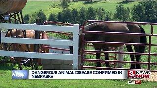 Dangerous animal disease confirmed in Nebraska