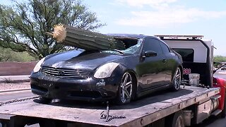 Driver injured after saguaro goes through windshield