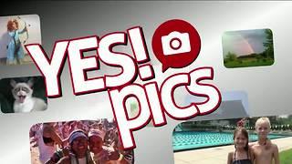 Yes! Pics: 9/13/18