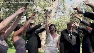 L'albero quasi li uccide durante il matrimonio