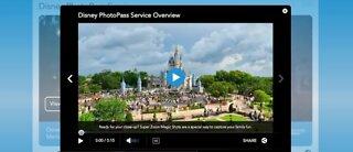 Disney World: No mask, no photos