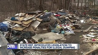 State Rep. introduces legislation to increase penalties for illegal dumping