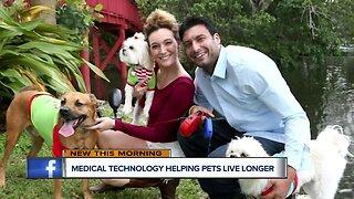 Medical technology helping pets live longer