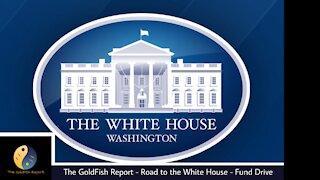 The GoldFish Report No. 615 - Week 199 POTUS Report
