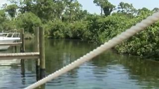 New testing happening over blue-green algae concerns
