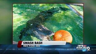Smash Bash at Reid Park Zoo