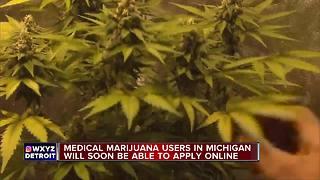 Michigan plans online medical marijuana registration