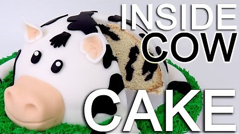 How to make a cow cake with an inside cow pattern!