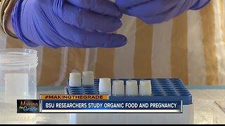 BSU researchers study organic food effects on pregnancy
