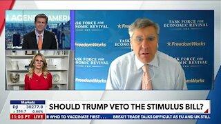 Should Trump Veto the Stimulus Bill?