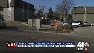 Teen taking out trash stabbed in Overland Park