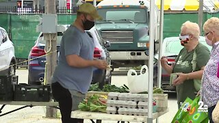 Baltimore County Farmers Market Back at State Fairgrounds