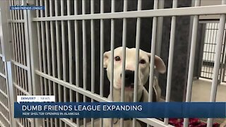Dumb Friends League opening new shelter in So. Colorado