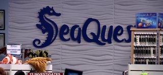 Investigation into SeaQuest -- Part 2