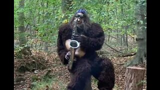 Bigfoot spotted playing saxophone