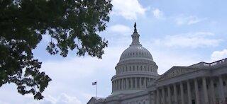 Possible future bi-partisan stimulus check