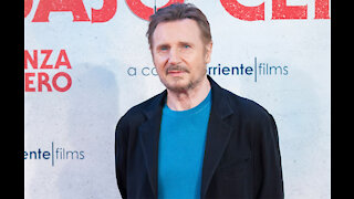 Liam Neeson planning retirement from action movies