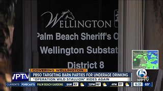 Palm Beach County Sheriff's Office targets barn parties for underage drinking during polo season in Wellington