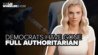 Democrats have gone full authoritarian