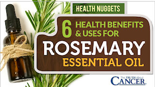 TTAC Presents: Health Nuggets - 6 Health Benefits & Uses For Rosemary Essential Oil