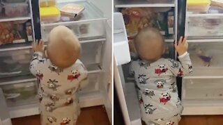 Hungry toddler humorously talks to the food in the fridge