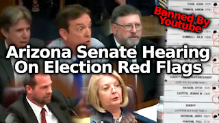 FULL Arizona State Senate Hearing For The Maricopa County Election Audit (Immediately Banned By YT)