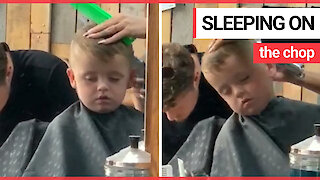 This is the funny moment a young boy nods off - as he's getting his hair cut