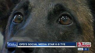 K9 Tye: OPD's social media star