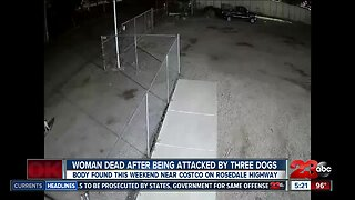 Three dogs fatally attack woman