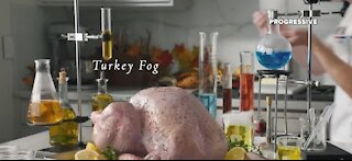 Whole Foods teams up with Progressive for Turkey Insurance