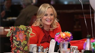 Could There Be A 'Parks And Recreation' Reboot?