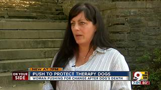 Push to protect therapy dogs
