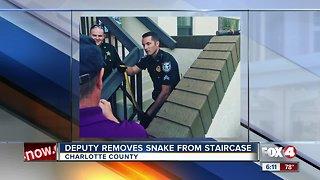 Deputy removes snake Charlotte County