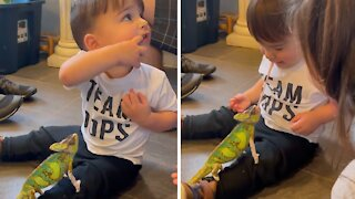 """Toddler gets a """"kiss"""" from his pet chameleon"""