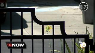 Man ransacks Vista home with 9-year-old boy inside alone, deputies say